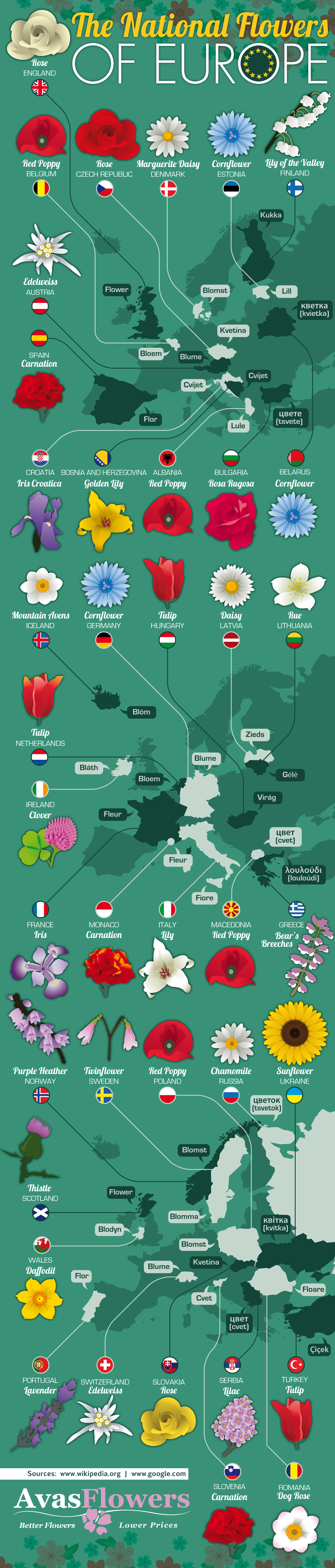The National Flowers of Europe - Infographic