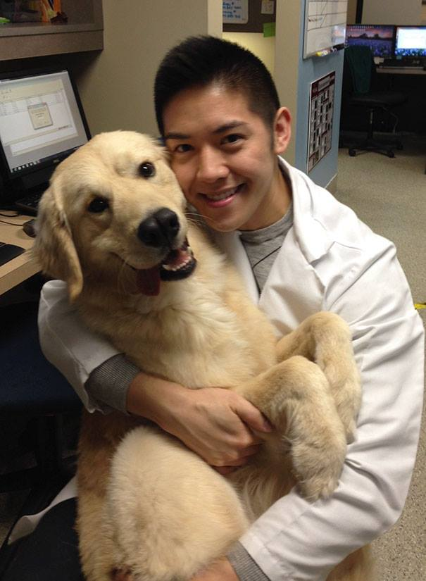 These Pictures Will Make You Want To Work At An Animal Hospital14