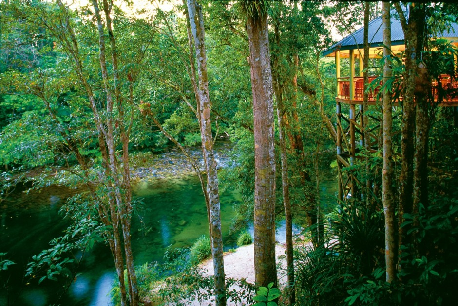Tree Houses That'll Make You Want To Get One Of Your Own_005