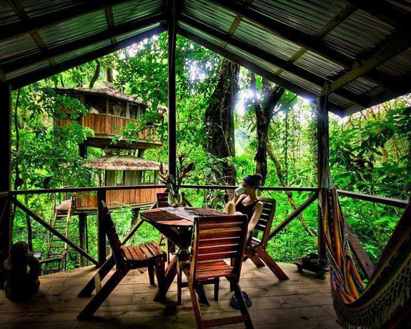 Tree Houses That'll Make You Want To Get One Of Your Own_012