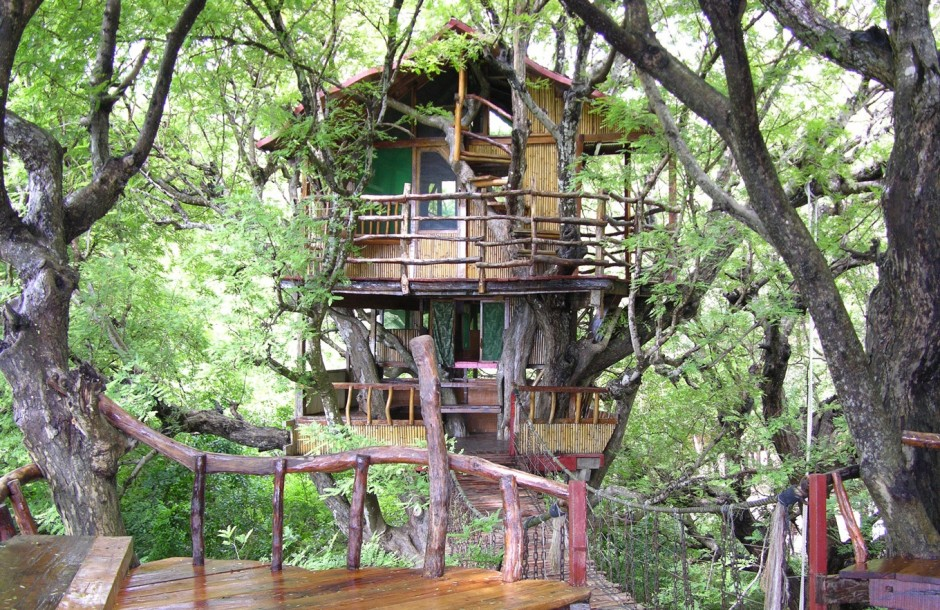 Tree Houses That'll Make You Want To Get One Of Your Own_022
