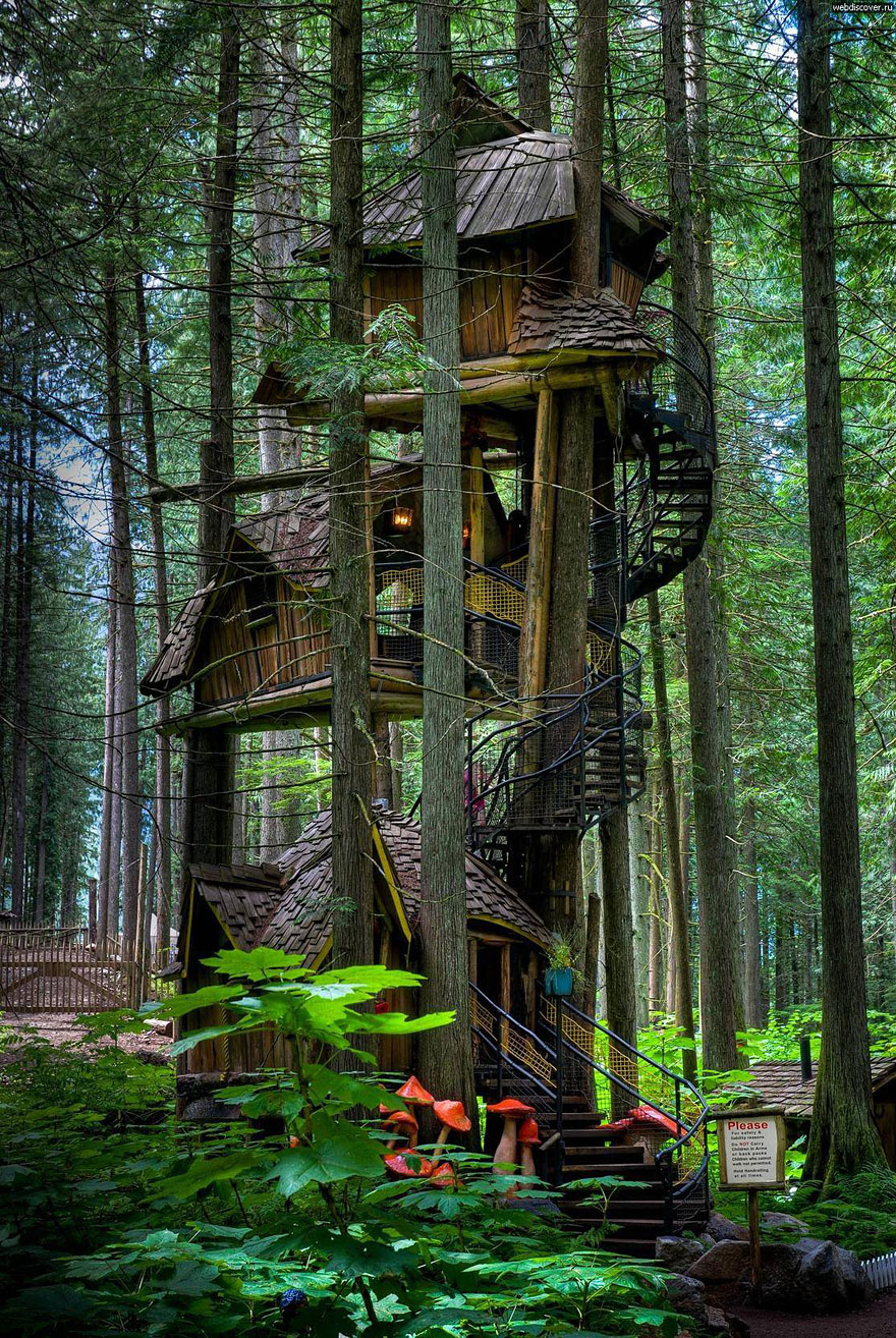 Tree Houses That'll Make You Want To Get One Of Your Own_041