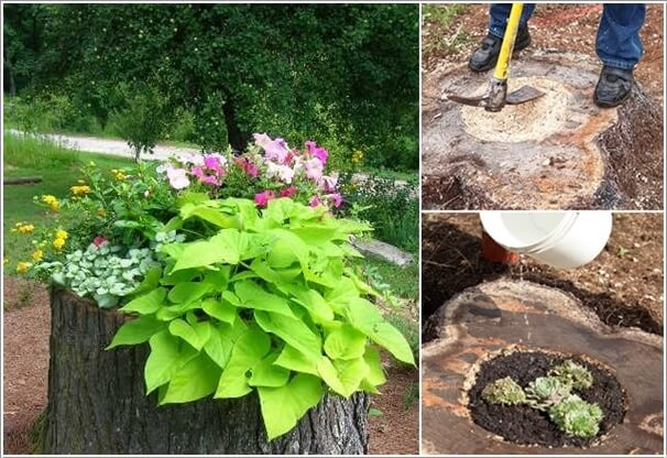 10 Interesting Ways You Can Use Tree Stumps (16)