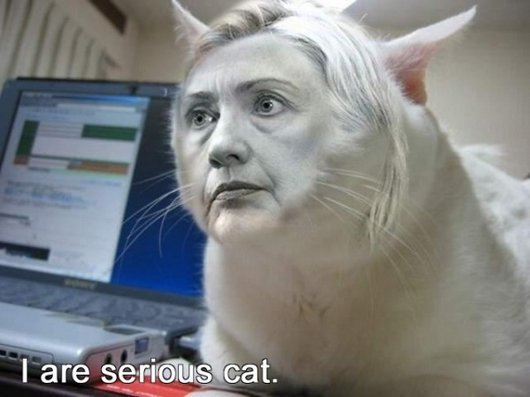 Hilarious Ways Hillary Clinton Was Photoshopped (12)