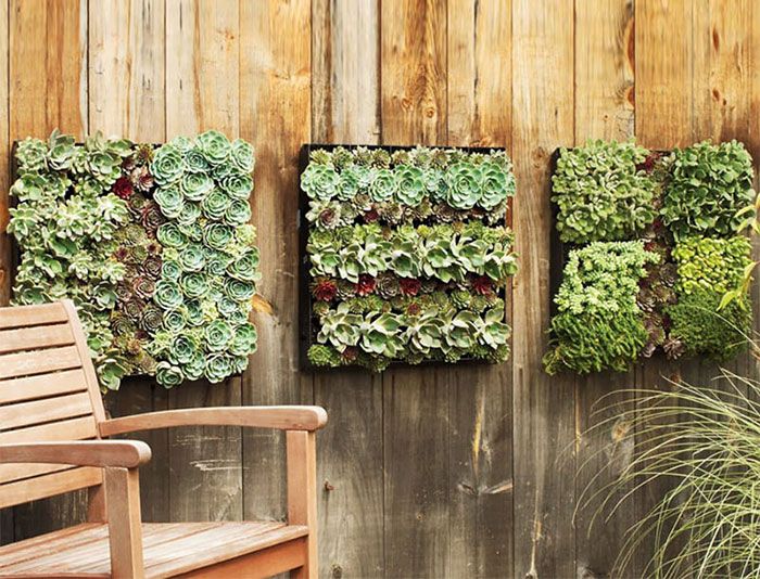 Ways To Make Your Garden Fences Look Extraordinary 10
