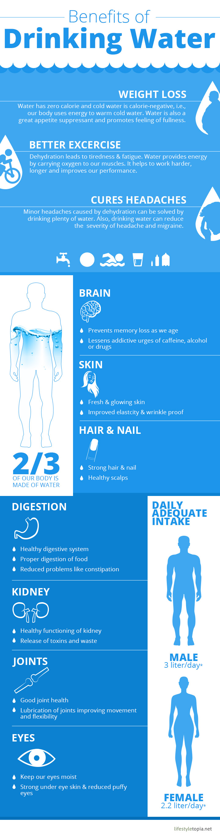 10 Solid Reasons To Keep Yourself Hydrated - Infographic