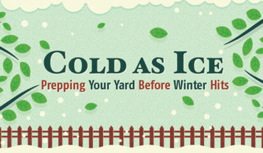 How To Take Care Of Your Lawn This Winter - Infographic