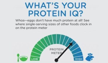 This Is Your New And Improved Protein-O-Meter - Infographic