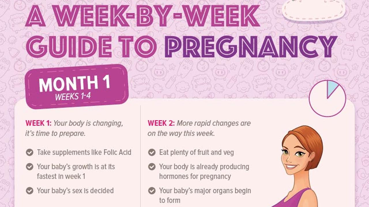 What Happens To A Woman's Body During Pregnancy?