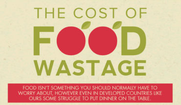 This Is How Much Food Wastage Actually Costs! - Infographic