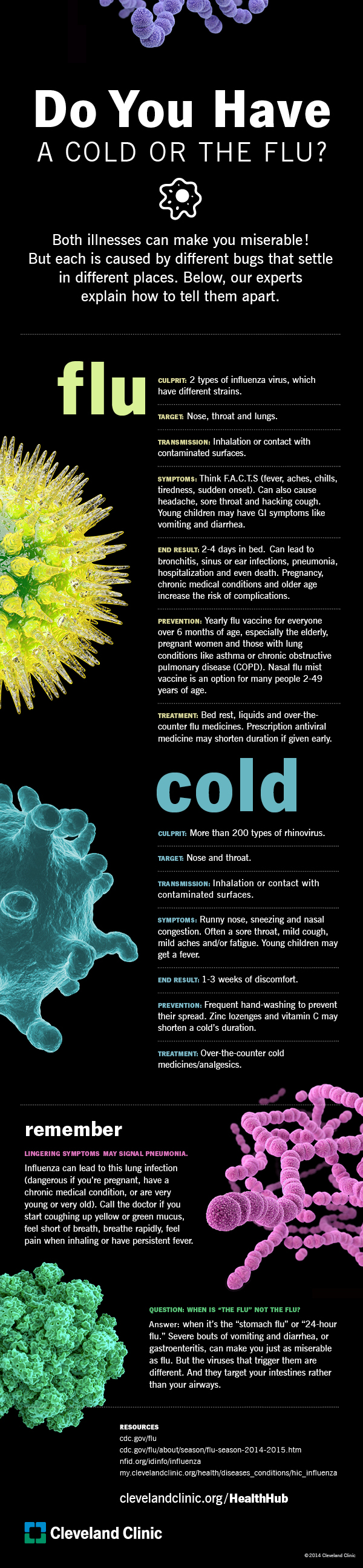 The Difference Between A Cold And The Flu - Infographic