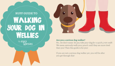 The Ultimate Dog Walking Guide - Infographic