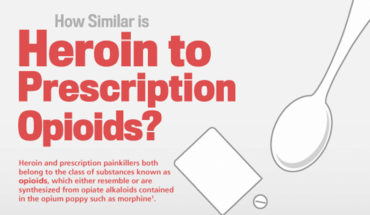 Heroin Vs Prescription Opioids - Similarities - Infographic