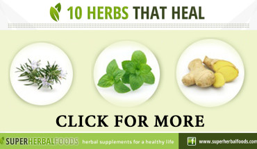 10 Powerful Healing Herbs
