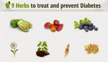 9 Herbs To Treat And Prevent Diabetes - Infographic
