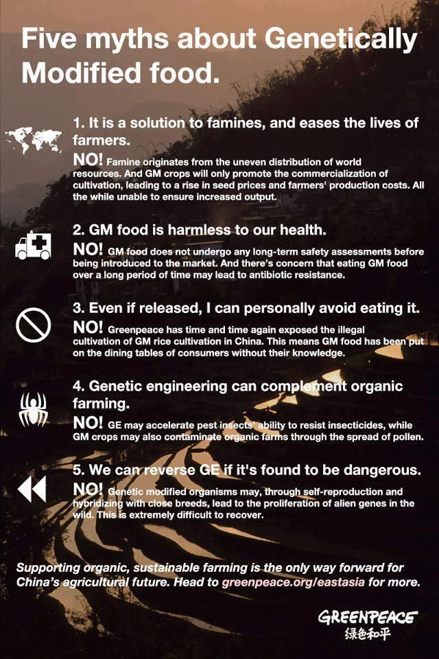 Five Myths About Genetically Modified Foods - Infographic