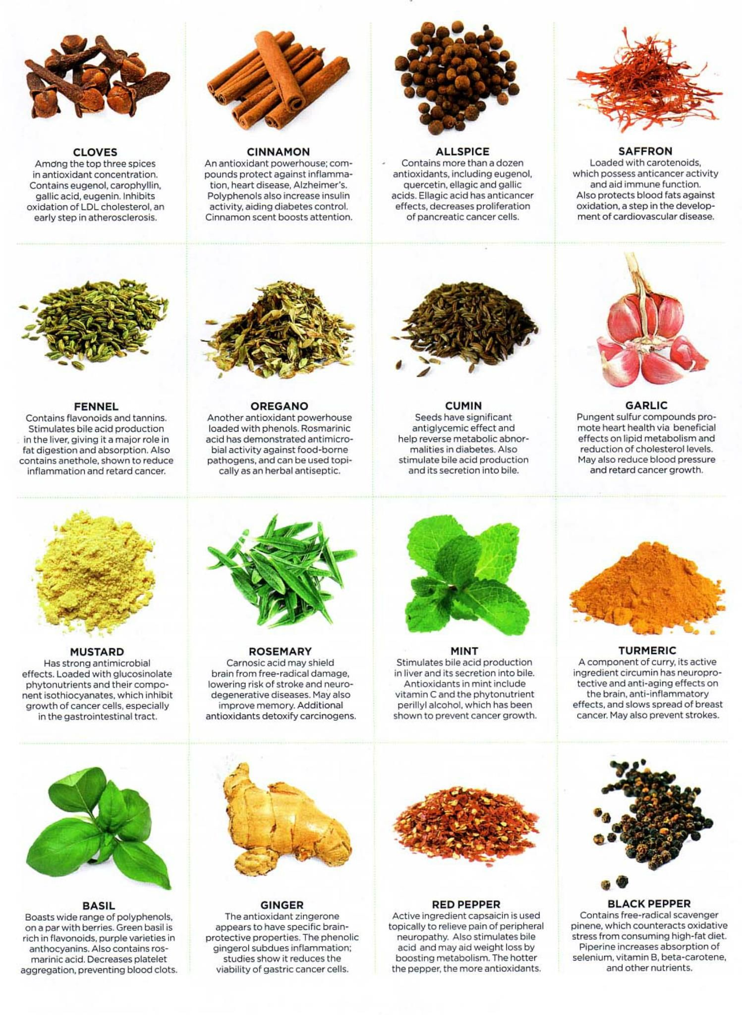 Healing Properties of Herbs - Infographics