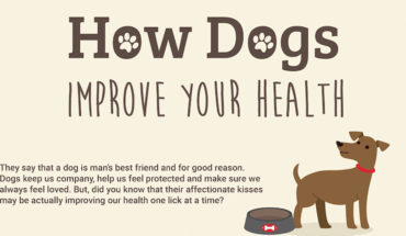 How Dogs Improve Your Health - Infographic