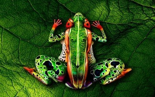 Body Paintings That Camouflaged Perfectly_005