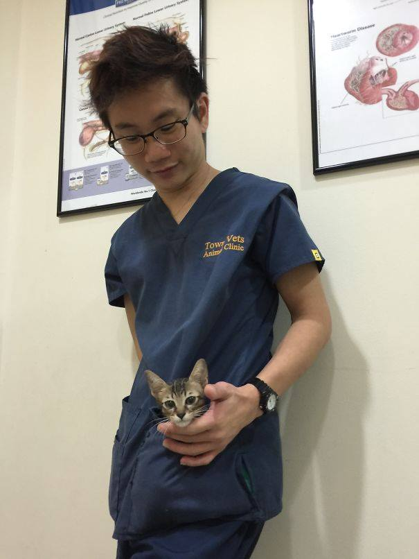 These Pictures Will Make You Want To Work At An Animal Hospital46