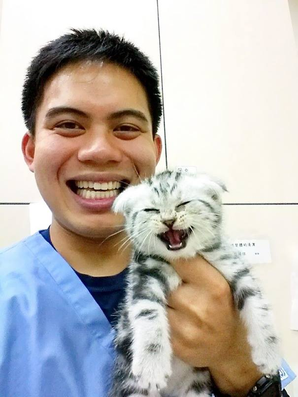 These Pictures Will Make You Want To Work At An Animal Hospital5