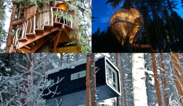 20 Tree Houses That'll Make You Want To Get One Of Your Own