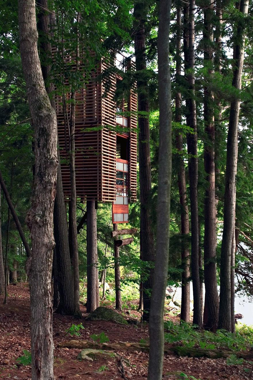 Architects Who Did NOT Destroy Nature To Make Buildings (11)