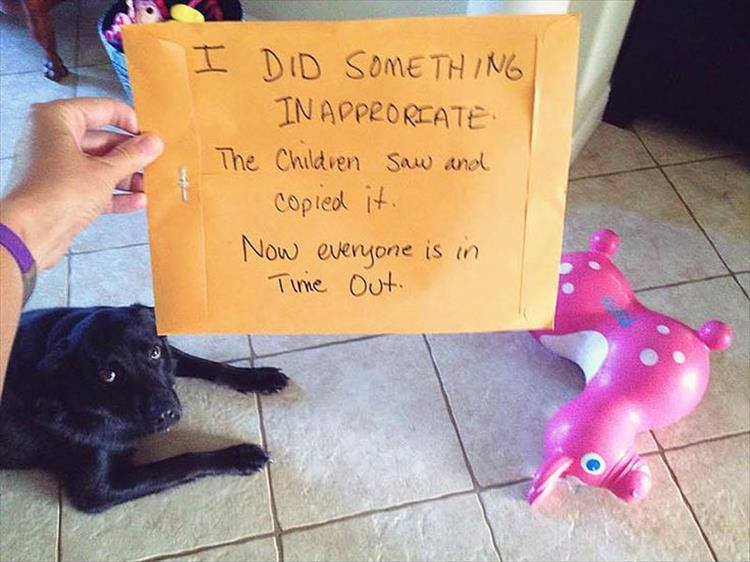 Confessions By These Cute Doggies (9)