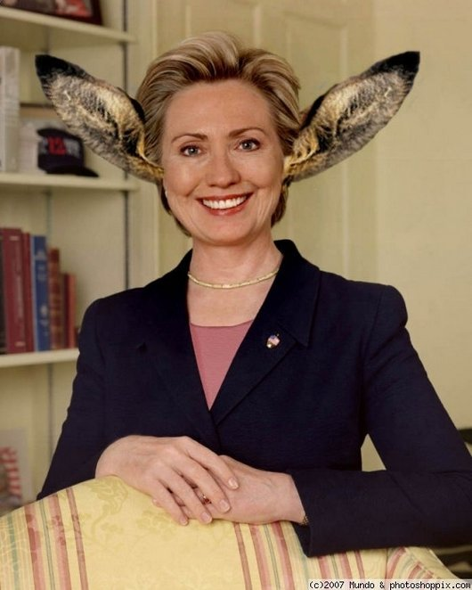 Hilarious Ways Hillary Clinton Was Photoshopped (9)