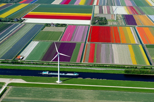 Images That Will Make You Want To Fly Forever (11)