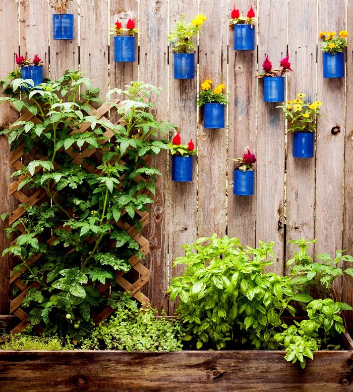 Ways To Make Your Garden Fences Look Extraordinary 9