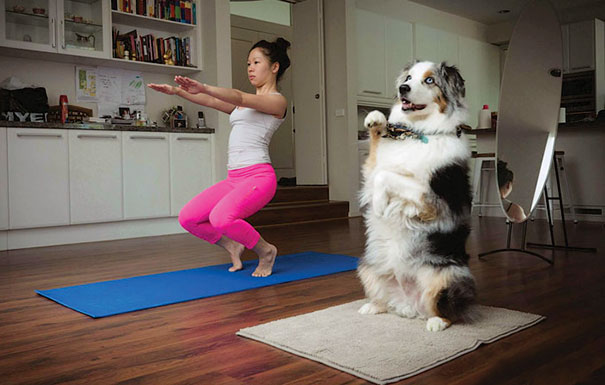 15 Animals Who Are Here To Give You Some Yoga Goals (15)