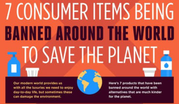 Consumer Products That Were banned For Good - Infographic