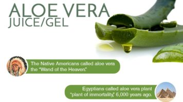 12 Reasons Why Aloe Vera Can Up Your Beauty & Health Game - Infographic
