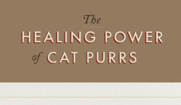 7 Healing Powers Of A Cat - Infographics