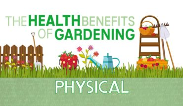 Did You Know Gardening Can Make You Healthy? - Infographic