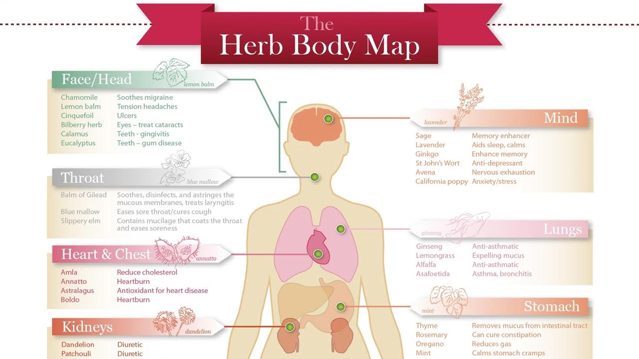 Infographic Of Natural Health Remedies