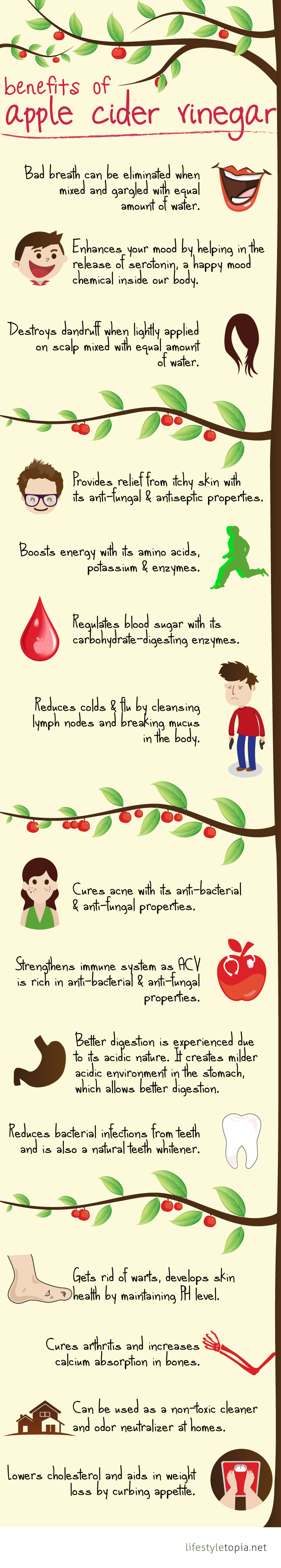15 Uses Of Apple Cider Vinegar - Infographic