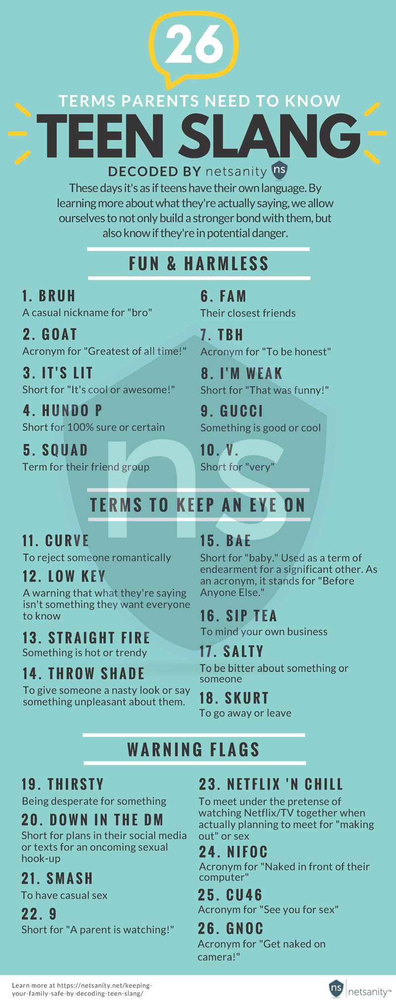 Teen Slang Parents Must Be Aware Of - Infographic