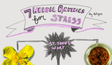7 Herbal Stress Busters - Infographic