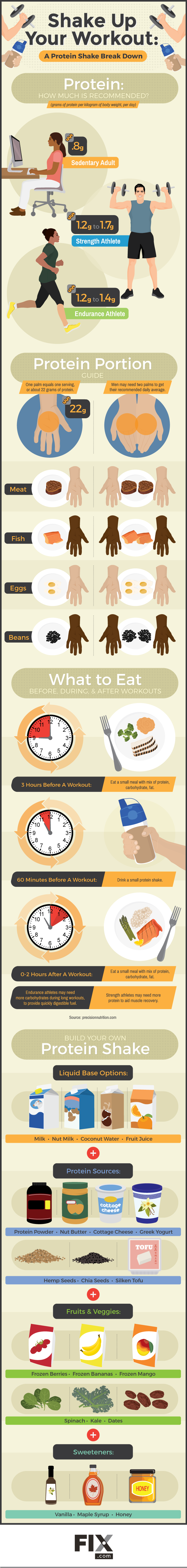 A Guide To Maintaining Your Protein Intake While Working Out - Infographic