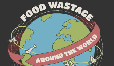 This is How Much Food is Wasted Around The World! - Infographic