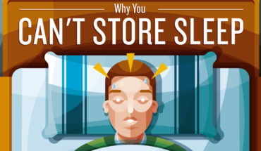 This is How Sleep Actually Works! - Infographic