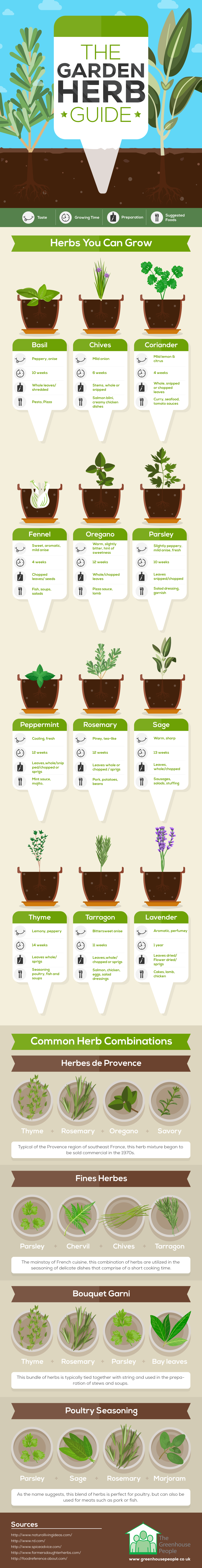 A Perfect Guide To Gardening Herbs - Infographic