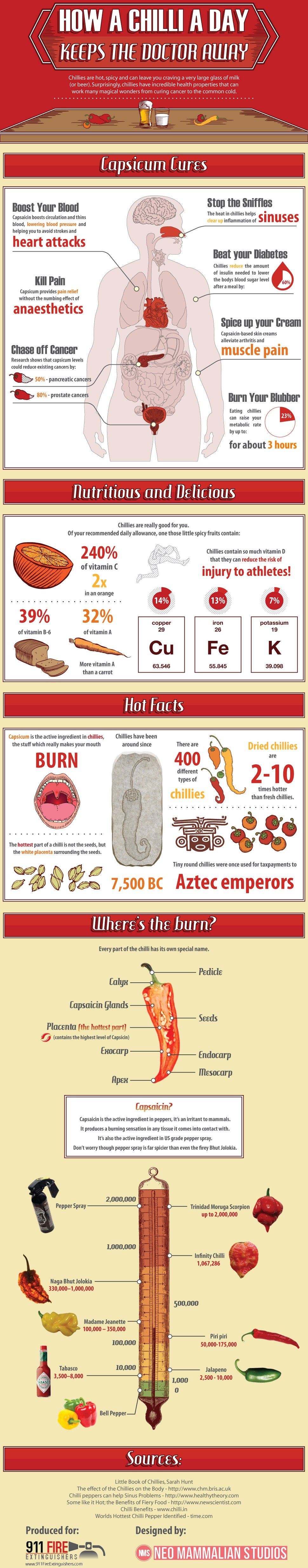 Here's Why You MUST Include Chillies In Your Everyday Diet - Infographic