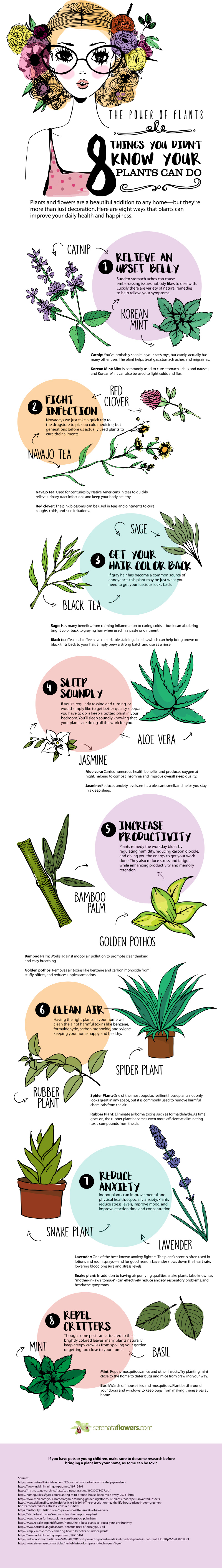 Did You Know Plants Could Do These 8 Things - Infographic