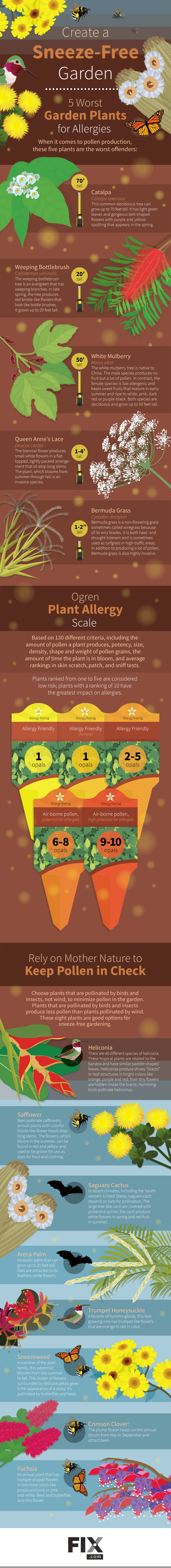Steer Clear From These 5 Worst Pro-Allergy Plants - Infographic