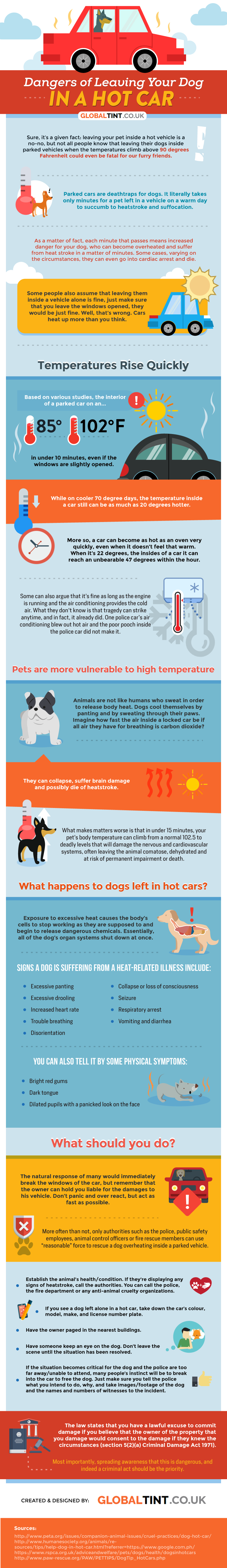 Why It's Dangerous For Your Dog To Be In A Car - Infographic