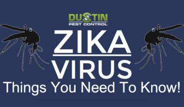 Zika Virus: Everything You Need To Know - Infographic