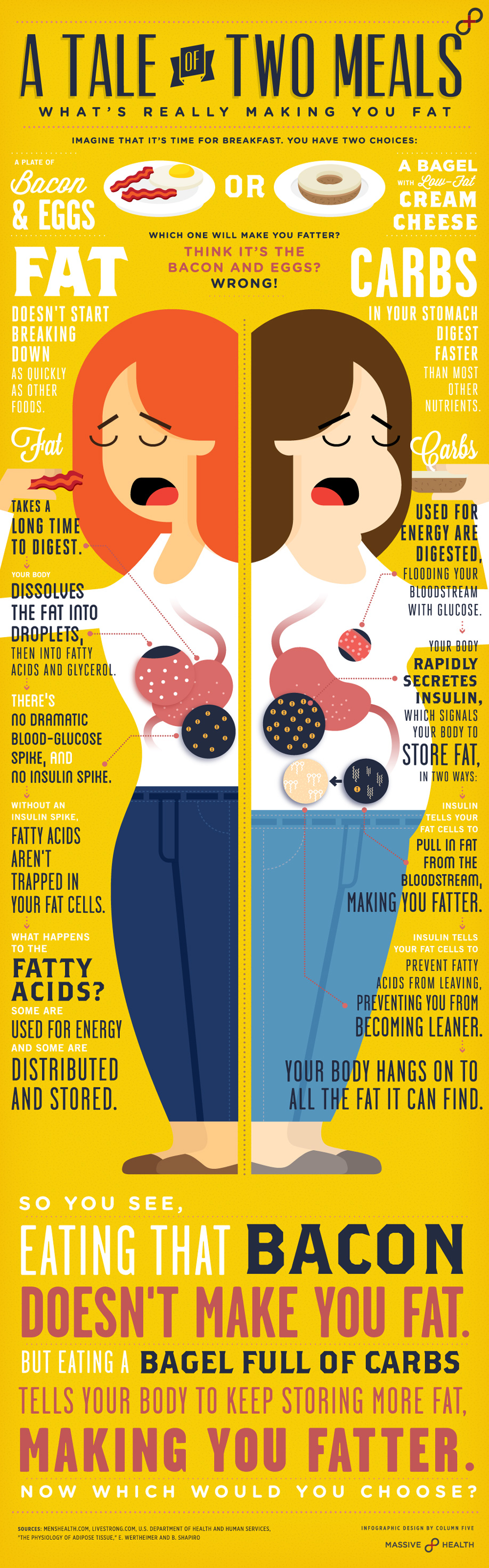 Fat vs Fit Breakfast – You Choose - Infographic